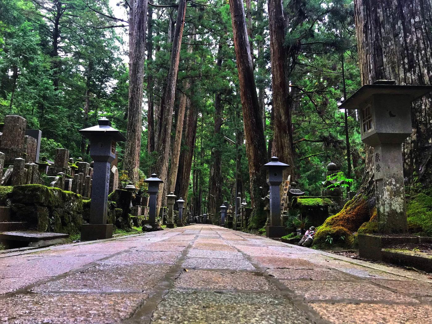 为什么那么多人爱住日本的寺庙?