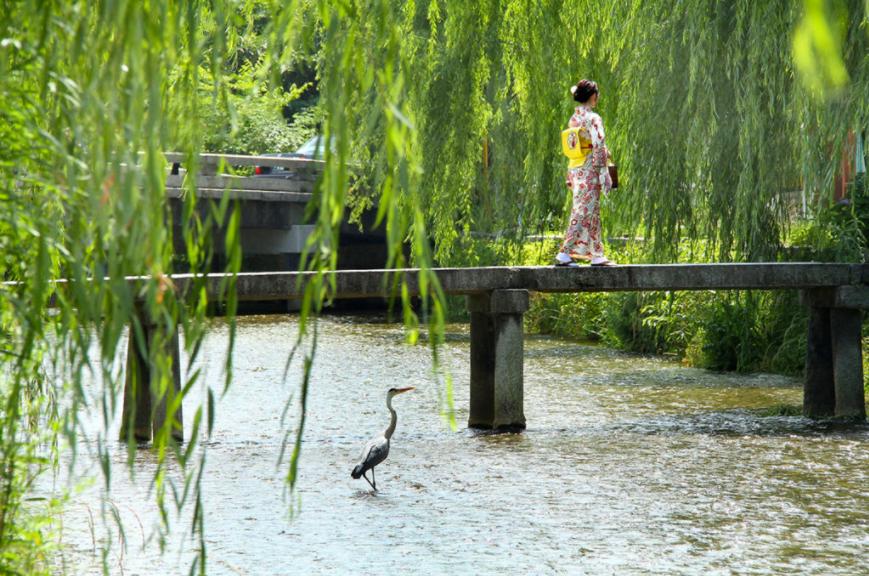 雨时京都,阴时京都,晴时京都,和我镜头里的京都