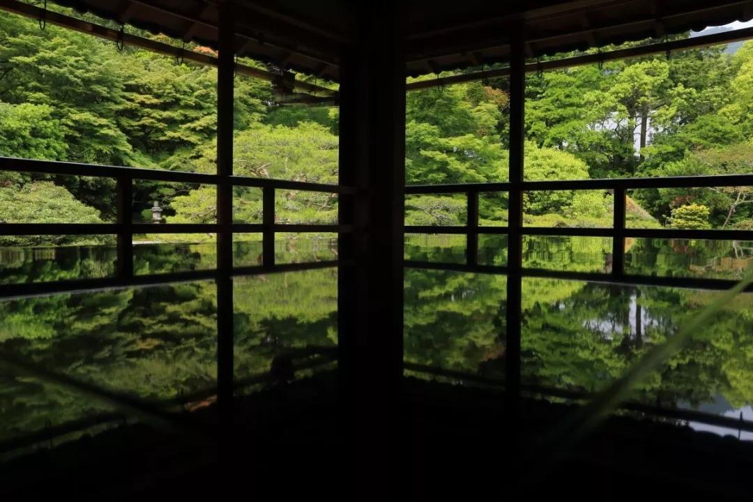 滋贺县・坂本元里坊「旧竹林院」来一次洗心摄影吧